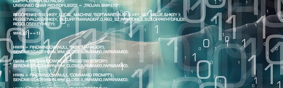 HS-LP-Webinar-Custom-Code-960x300