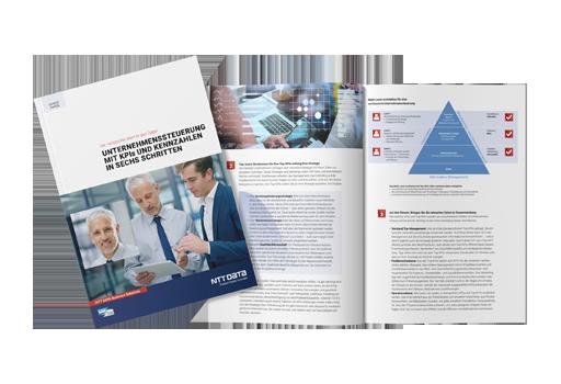 Expertpaper Unternehmenssteuerung mit KPIs und Kennzahlen mockup-titel-innenseiten